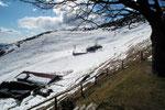 Alpe di Naccio 1395 m