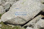 Deviazione per la Rotondohütte