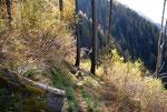 Sentiero per i Monti di Vira