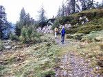 Sentiero Alpe di Cardinello - Alpe d'Albion