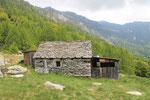 Alpe di Carpögna 1576 m (Valle Maggia)