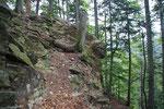 Seguiamo il costone per l'Alpe Lombardone
