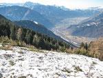 Valanga all'Alpe Domas 1666 m