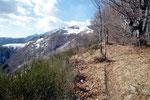 Verso l'Alpe di Naccio