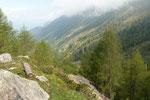 Alpe di Motto 1864 m verso l'Alpe Forcarid