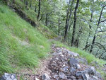 Sentiero Tec (Leggia) - Alp de Comun