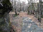 Bella pavimentazione fino ai Monti di Artore