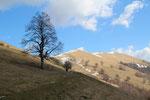 Alpe Orimento 1275 m
