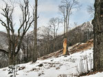 Piano di Lut sullo sfondo il Monte Lema