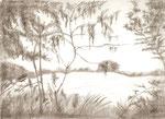 Landschaft3 - Bleistift 30 x 40 cm unverkäuflich