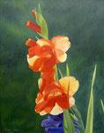 Gladiolen im Garten - Öl auf Leinwand 50X40 cm verkäuflich