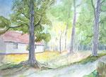 Nordwald Alsen - Aquarell 30x40 cm
