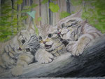 Drei Wildkätzchen - Aquarell 60x80 cm unverkäuflich