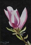 Magnolienblüte - Aquarell 32x24 cm verkäuflich