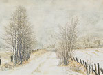 Winter in der Barker Heide
