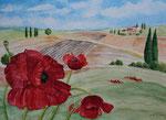 Mohn in der Provence - Aquarell 40x50 cm verkäuflich