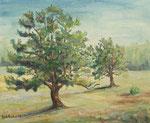 In der Barker Heide - Öl auf Hartfaserplatte 49x59 cm - 1978 - unverkäuflich