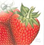 Erdbeerzeit - Schichttechnik mit Blei- und Buntstift 30x30 cm unverkäuflich, als Druck erhältlich