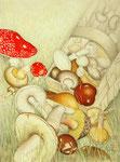 Alle Pilze kann man essen, manche nur einmal - Schichttechnik mit Blei- und Buntstift 40x30 cm unverkäuflich, als Druck erhältlich