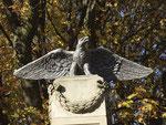 Der über 100 Jahre alte Adler krönt das Kriegerdenkmal 1870/71. Sein Vorgänger wurde 1919 zerstört , weil einmarschierende Franzosen in ihm ein Kriegssymbol gesehen hatten. Der heutige Adler gilt als Friedenssymbol. (Bild: Anneliese Dauphin)