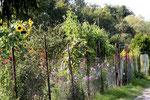 Natur pur - im Garten, unweit des Flüsschens Pfrimm. (Bild: Anneliese Dauphin)