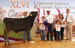 719 Xigo Vigor Romulo                                              Campeón Becerro Oaxaca 2014,