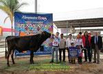 719 Xigo Vigor Romulo                                             Campeón Torete Slp. 2015