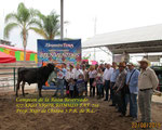 719 Xigo Vigor Romulo                                              Gran Campeón de la Raza Reservado Slp. 2015
