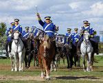 Internationale deutsche Kavalleriemeisterschaften