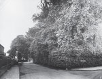 Stockfield Road by Douglas Road 29 July 1925 (Birmingham Libraries)