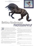 Interview mit Bettina Niedermayr
