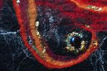 Detail Phönix aus der Asche, Filz-Design Cornelia Spiegl