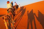 世界一広い(南極は除く)サハラ砂漠の中を 宿のみんなでラクダに乗って進んでいきます