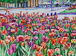 Sylvia Wanner, Original-Aquarellgemälde-Nr.840, Die Tulpen, Aquarellkarton, 2013, 48x36 cm.