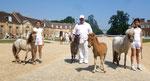 Juillet 2013 : championnat de France au Haras du Pin (3 mois), avec mes 1/2 soeurs et frères