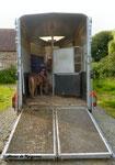 Devine Ki  monte dans le van pour la 1ère fois - Juin 2014 (presque 10 mois)