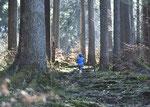 """""""Geheimweg"""" zum Freibergsee,10.04.2020"""