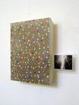 Peter Telljohann, o. T., 2007, 31 x 34 x 7, Acryl auf Plexiglas und Foto,