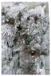 2011.8.20  インクジェット 水彩 ペン  220×148mm