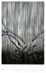 Trace  wood-cut (木版) 180×123mm