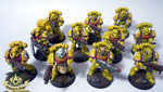 imperial fists Space Marine Tactical Squad