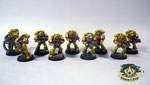 imperial fists Space Marine Tactical