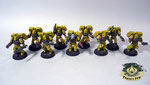imperial fists Assault Squad