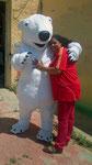 Mascota Oso Polar