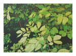 Buschwerk, 100x140 cm, Acryl,Papier,Leinwand, 2015