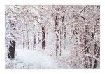 Winterwald IV, 100x150 cm, Acryl,Papier,Leinwand, 2015