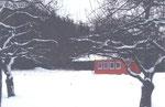 Dezember 2010 - die Container stehen