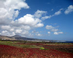 Lanzarote Monte Corona