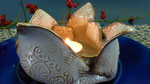 Winterausstellung mit Toepferkursen bei Keramik Auf der Spek © K. Heusinger