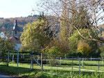 In Pleisweiler mit Blick auf die Kirche